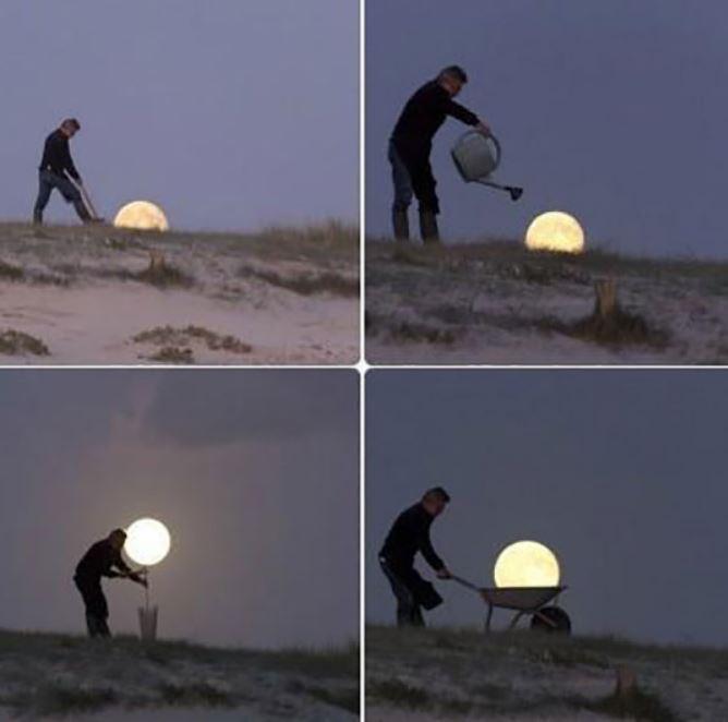 Moon Harvesting
