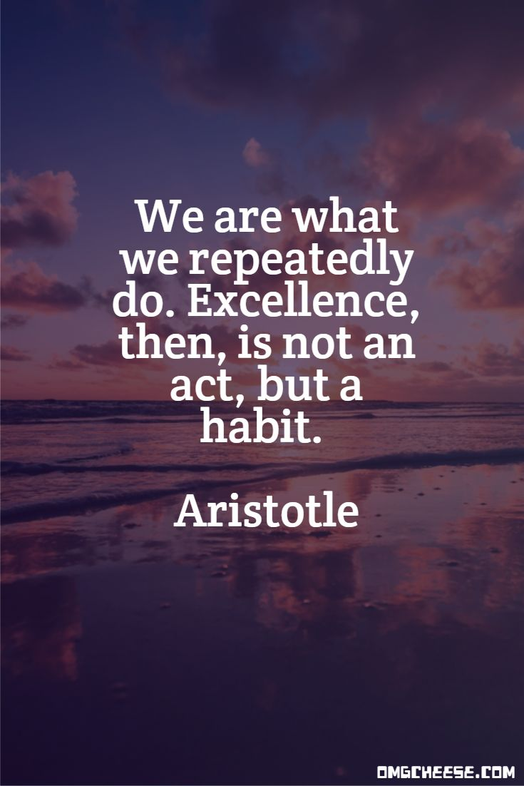 We are what we repeatedly do. Excellence, then, is not an act, but a habit. Aristotle